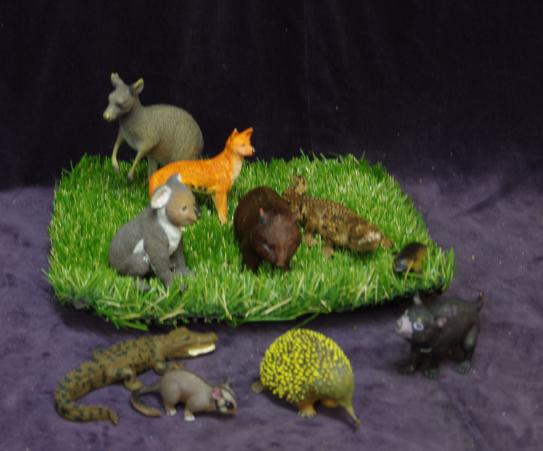 E27: Australian Animals Set